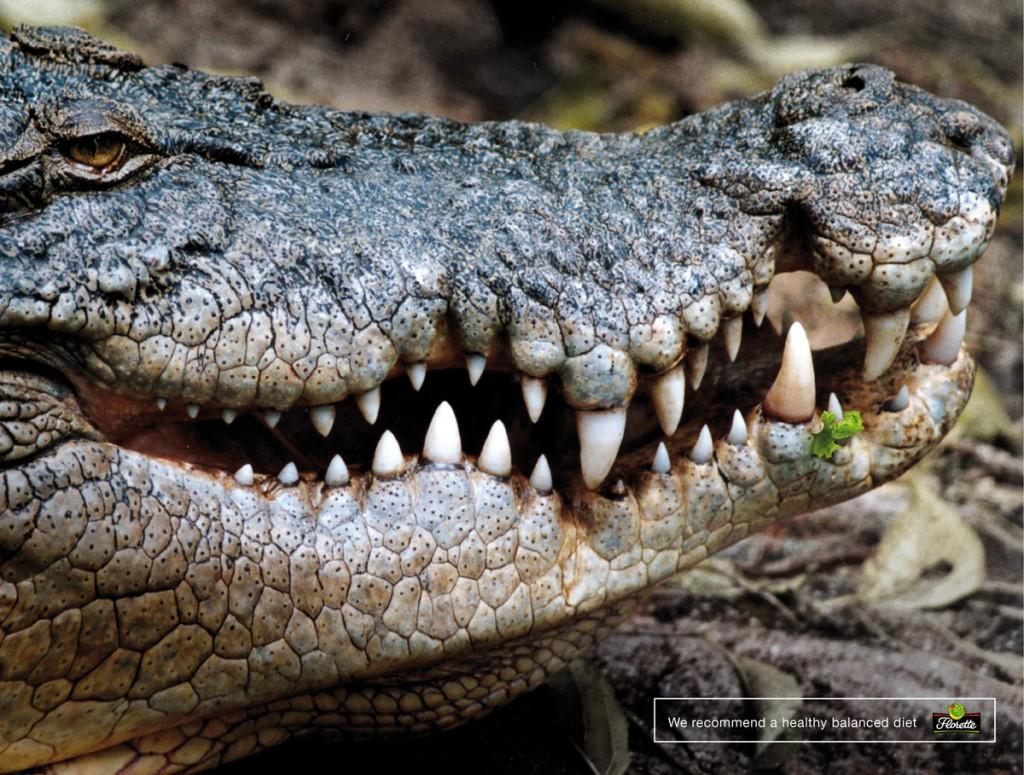 Florette-Crocodile-bout de salade coincé entre les dents