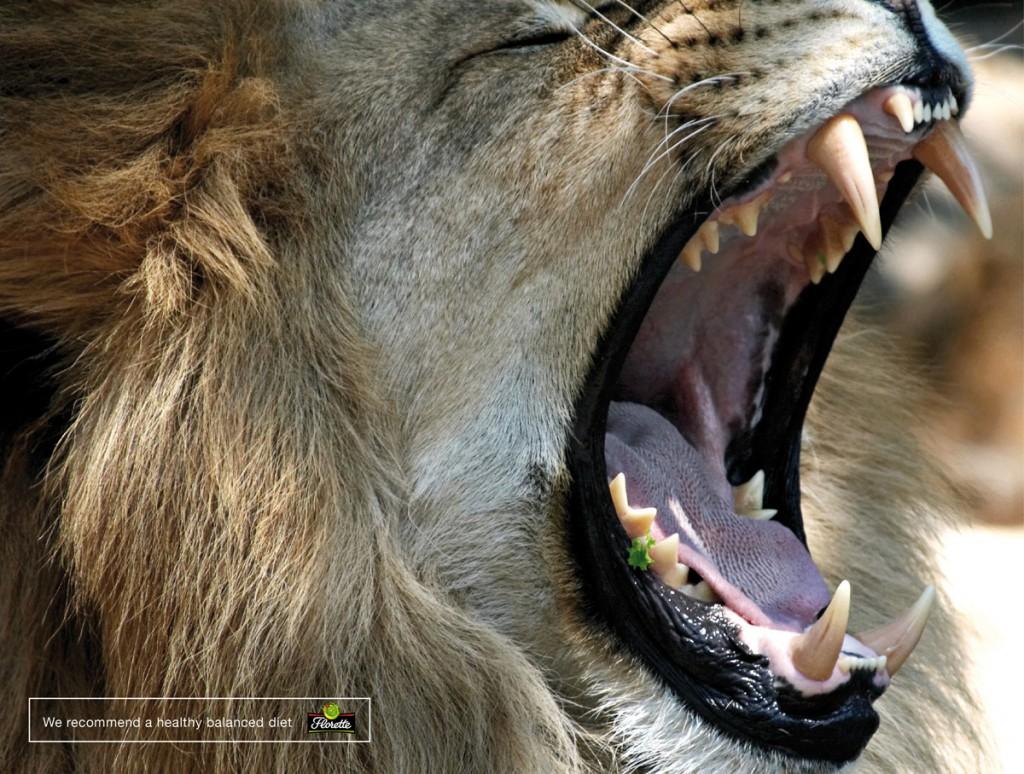 Florette-Lion-bout de salade coincé entre les dents