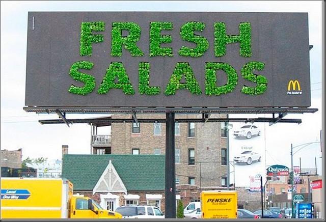mcdonalds-salad