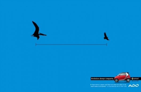 Un ptérodactyle n'est plus qu'un vulgaire pélican